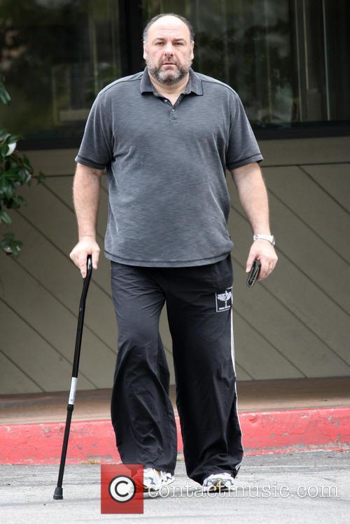 FILE PHOTO Actor JAMES GANDOLFINI has died during...