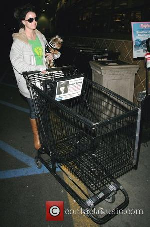 Britney Spears goes to Ralphs grocery store with her dog Los Angeles, California - 28.01.08