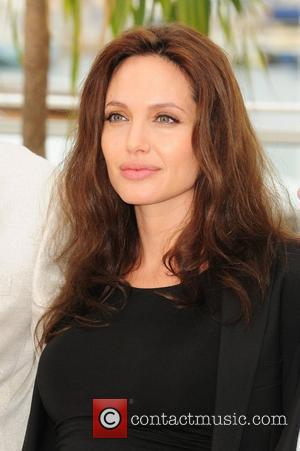 Paparazzi Following Jolie Kicked Out Of Namibia