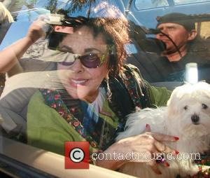 Elizabeth Taylor Goes Back To Her Roots