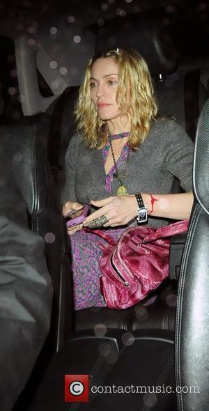 Madonna Auctions Handbag For $500,000