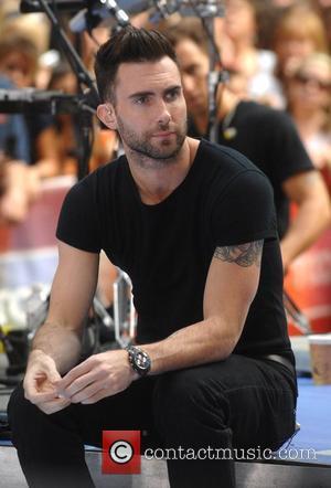 Levine: 'Don't Call Me A Male Paris Hilton'