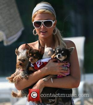 Paris Hilton, Malibu Beach
