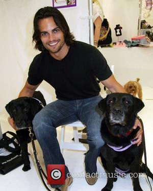 Scott Elrod Runway show for Pet Fashion Week New York. Pet Fashion Week is a tradeshow and a designer platform...