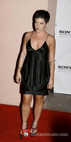 Pink, The 50th Grammy Awards Gallery and Grammy