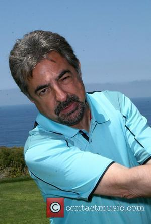 Mantegna Fills Patinkin Gap On Criminal Minds