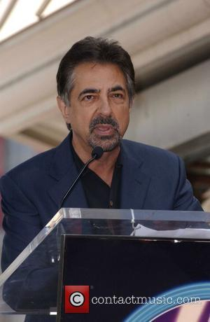 Joe Mantegna, Star On The Hollywood Walk Of Fame and Walk Of Fame