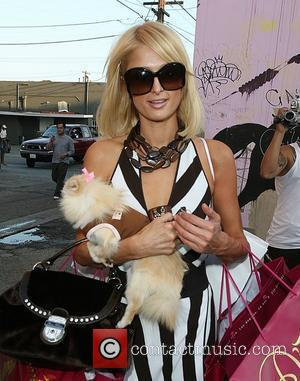 Paris Hilton  and her Pomeranian dog 'Marilyn Monroe' shop at Diavolina boutique on Robertson Boulevard Los Angeles, California -...