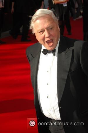 Sir David Attenborough,  British Academy Television Awards held at the Royal Festival Hall - Arrivals. London, England - 26.04.09...
