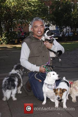 Cesar Millan attends a photocall ahead of his 2010 UK Tour London, England - 25.11.09