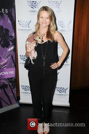 Lindsay Pulsipher HBO's True Blood The HSUS Presents Rescue Paws  at The W hotel Westwood, California - 10.11.10