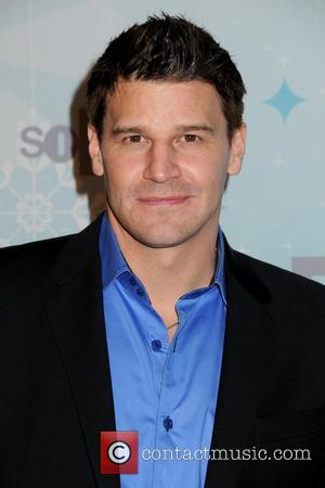 David Boreanaz Reaches Settlement In Sexual Harassment Suit