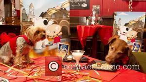 London's first ever fine dining and cocktail bar for dogs was launched in celebration of Family Guy's pet dog Brian....