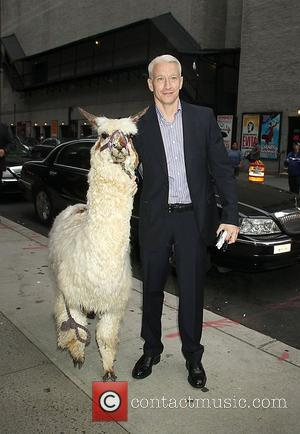 Anderson Cooper and The Late Show With David Letterman