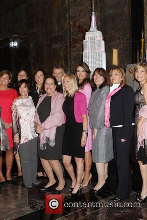 Elizabeth Hurley, The Empire State Building, Estee Lauder and Breast Cancer Awareness