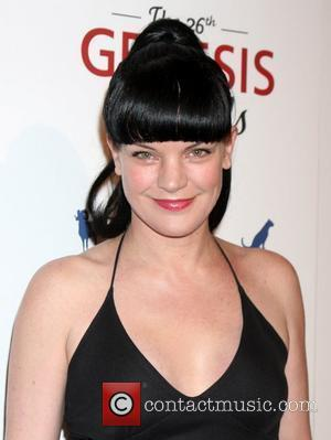 Pauley Perrette Mourning Loss Of Dog
