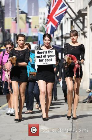 Models walk down New Bond Street holding the corpses of dead foxes in support of PETA's anti fur campaign during...