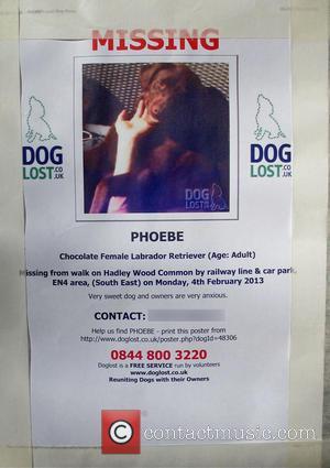 Emma Bunton - Emma Bunton missing dog poster
