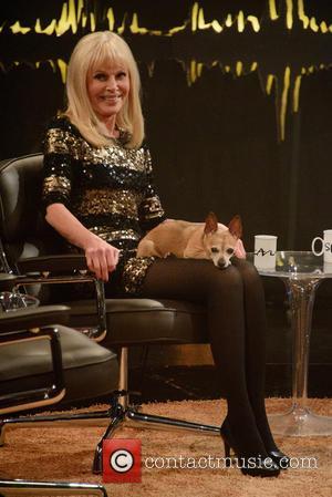 Britt Ekland - Britt Ekland with her pet Chihuahua dog called Teddy, being interviewed on Scandinavian primetime talkshow 'Skavlan' filmed...