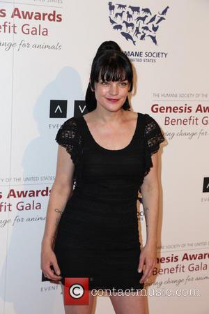 Pauley Perrette's Ex-husband Attacks Actress In New Court Papers