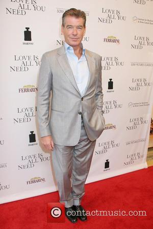 Pierce Brosnan Stopped By Airport Security For Carrying Knife In Hand Luggage