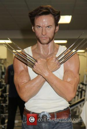 Hugh Jackman wax sculpture and Wolverine wax sculpture - Hugh Jackman's Wolverine wax figure works out sweating along with other...
