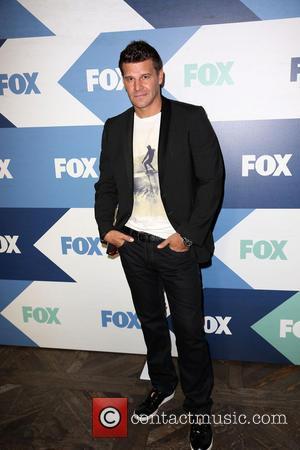 David Boreanaz - Celebrities attend Fox Summer TCA All Star Party. - Los Angeles, CA, United States - Thursday 1st...