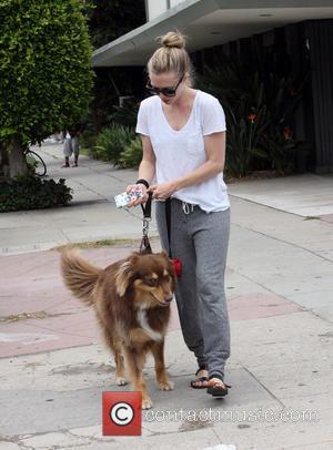 Amanda Seyfried: 'I Want To Play Songbird Eva Cassidy'