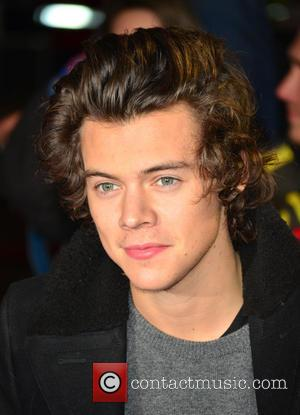 Harry Styles Hits The Red Carpet At Sundance Film Festival For Zach Braff's 'Wish I Was Here' Premiere