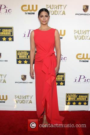 Camila Alves - The 19th Annual Critics' Choice Awards at The Barker Hangar - Santa Monica, California, United States -...