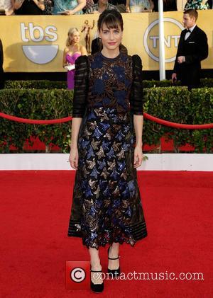 Amanda Peet - The 20th Annual Screen Actors Guild (SAG) Awards held at The Shrine Auditorium - Arrivals - Los...