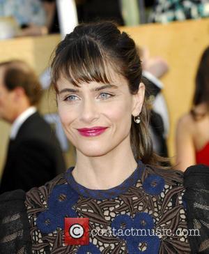 Amanda Peet - The 20th Annual Screen Actors Guild Awards arrivals - Los Angeles, California, United States - Sunday 19th...