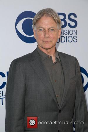 Mark Harmon's Dog Takes Bite Out Of Ncis Crewmember