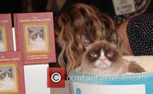 "Lifetime Developing ""Grumpy Cat's Worst Christmas Ever"""