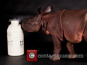 Monica - Mandatory Credit: Kelly Ann Brown/The Cincinnati Zoo - Buffalo, New York - Friday 13th June 2014