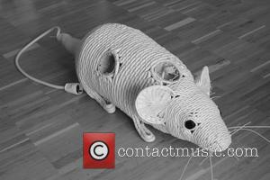 Munich, Electric Coil Cable Sculptures, Pavel Sinev, Dwp, Gallery, Art, Exhibition, Collection, Bulgarian and Germany