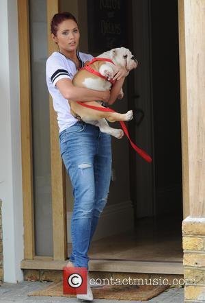 Amy Childs - Amy Childs leaves her home in Brentwood, Essex carrying her new puppy bulldog Leonardo before heading to...