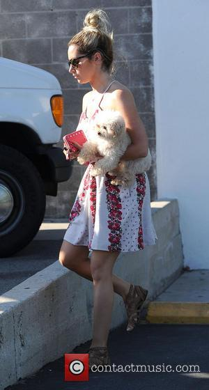 Ashley Tisdale and Maui - Ashley Tisdale carries her dog Maui whilst out in Studio City - Los Angeles, California,...