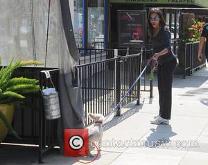 Zoe Saldana - Zoe Saldana, showing off her growing baby bump, is spotted walking her dog with friends in Studio...