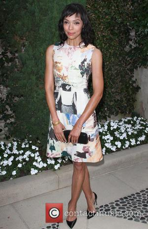 Tamara Taylor - A variety of stars arrived at The Rape Foundation's 2014 brunch which was held at Greenacres in...