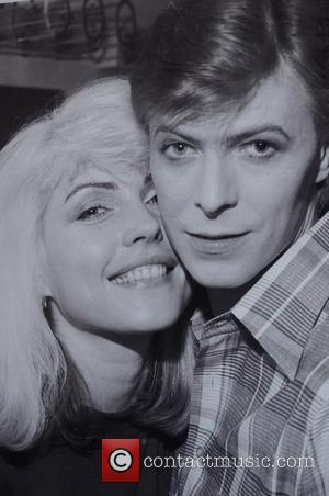 Chris Stein, Gallery Photo and Blondie