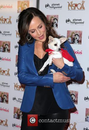 Julie Benz - Jennifer Harmon Celebrity Poker Tournament Benefiting Nevada SPCA Inside Planet Hollywood Resort and Casino Las Vegas at...