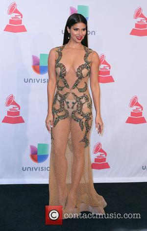 Roselyn Sanchez - A host of celebrities were snapped as they attended the 2014 Latin Grammy Awards which were held...