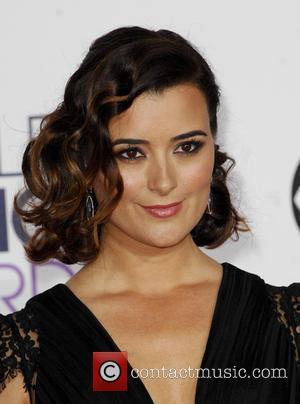 Cote De Pablo - A variety of stars were photographed as they took to the red carpet for the 41st...