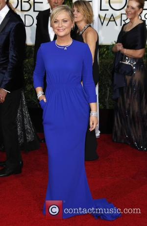 Amy Poehler - A host of stars were photographed as they took to the red carpet at the 72nd Annual...