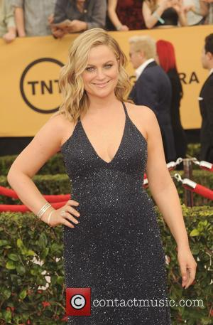 Amy Poehler - A host of stars were photographed on the red carpet as they arrived at the 21st Annual...