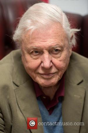 David Attenborough - David Attenborough's Natural Curiosities - press launch held at the London Zoo. - London, United Kingdom -...