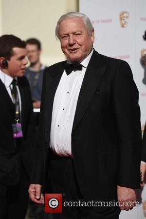 Sir David Attenborough - House of Fraser British Academy (BAFTA) Television Awards held at the Theatre Royal - Arrivals. -...