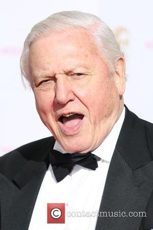 Sir David Attenborough - A host of stars were photographed as they arrived for the House Of Fraser British Academy...