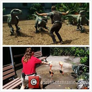 Dallas Zoo - In the wake of the movie Jurassic World's blockbuster opening, a new viral photo fad has been...